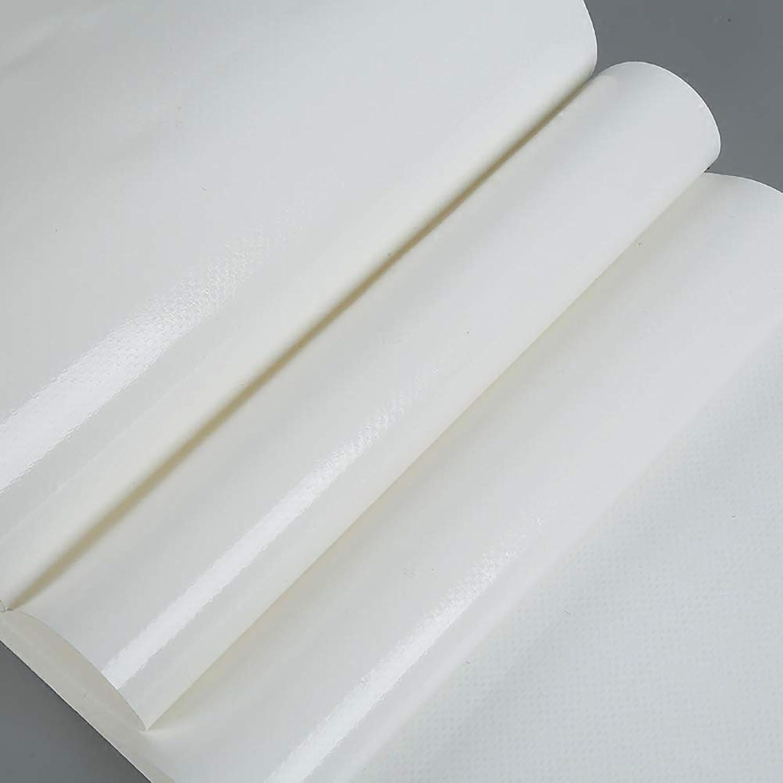 QYJPb Heavy Duty Duty Duty Plane Weiß PVC Plane Rainproof Cloth Wasserdichte Sonnencreme-Plane - Planen (größe   4x4m) B07PNGRJNH  Ausgezeichnet f7352f