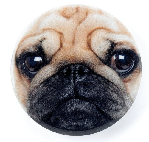 Pug Face Mirror by Catseye by Fish Around