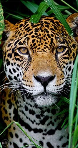 TEXTIL TARRAGO Toalla de Playa 90x170 cm 100% Algodon Leopardo estamapcion Digital fotografica THD08