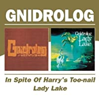 In Spite Of Harry`S Toe-Nail/Lady Lake / Gridrolog by Gridrolog (2004-11-09)