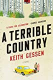 Image of A Terrible Country: A Novel