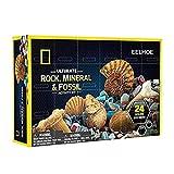 Festnight Caja de Regalo de minerales navideños Caja de muestras de minerales de Roca Mineral Natural Regalos para niños Juguete para Explorar
