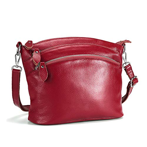 Lecxci Small Luxury Genuine Leather Cross Body Purses, Zipper Makeup Smartphone Wallets, Over The Shoulder Bags for Women Teen Girls (4 Zipper Pockets - Burgundy Red)