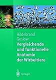 Vergleichende und Funktionelle Anatomie der Wirbeltiere (Springer-Lehrbuch) (German Edition) - Milton Hildebrand