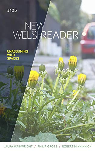 New Welsh Reader Winter 2020: New Welsh Review (English Edition)
