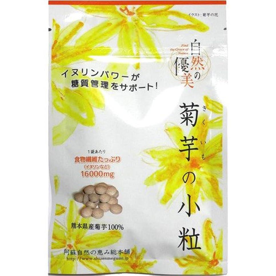 暫定のヒット新年阿蘇自然の恵み総本舗 菊芋の小粒 100錠