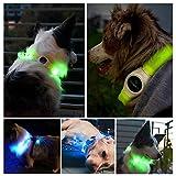 LED Hunde Halsband, LaRooTM Blinkende Leuchtendes LED Sicherheit Halsbänder - 3