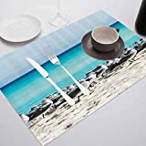 FloraGrantnan Washable Placemat Rectangular Placemat, Seagulls Decor Collection Seagull on The Cancun, Used in Homes, Restaurants, Hotels, Set of 6