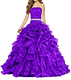 ANTS Women's Pretty Ball Gown Quinceanera Dress Ruffle Prom Dresses Size 12 US Purple