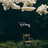 2NE1 Park Bom Spring - Pack of CD, Booklet, Photocard, Folded Poster with Pre Order Benefit, Extra Decorative Sticker Set, Extra Photocard Set