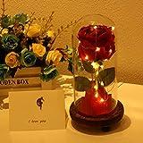 Rosa de seda de «La Bella y la Bestia» en campana de cristal, con luces LED y base de madera para decorar