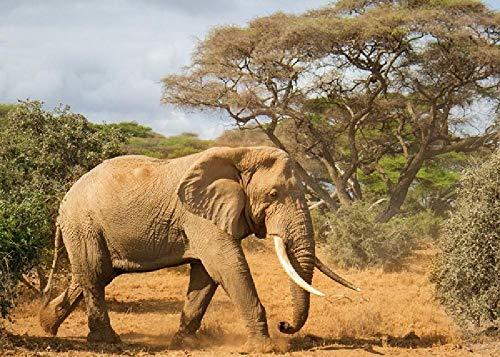 Colmillos De Elefante África Árbol De La Naturaleza 1000 Rompecabezas Juguetes Educativos para Niños Desafío Capacidad Intelectual Rompecabezas De Madera