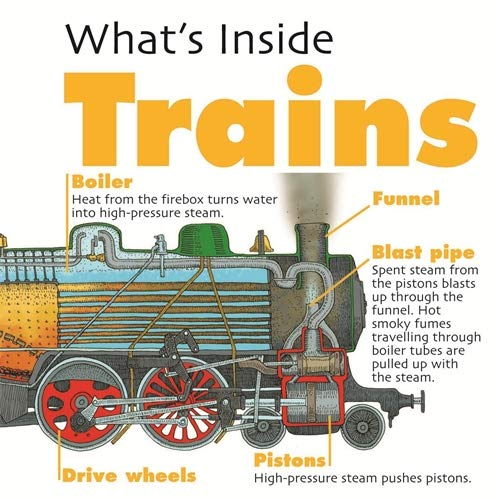 Trains (What's Inside?) by David West
