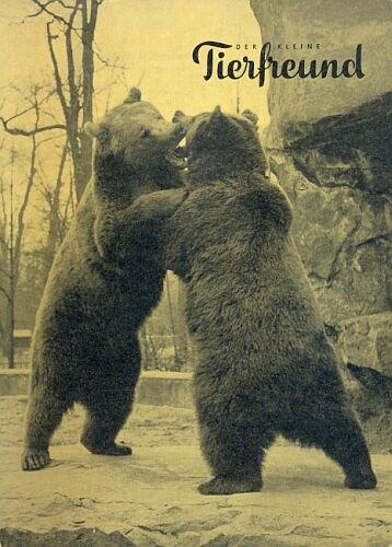 Der kleine Tierfreund (Band mit den Tierfreundzeitschriften Januar bis Dezember 1964) (Natur)