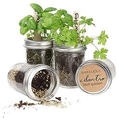Makerskit Mason Herb Garden Gift Set