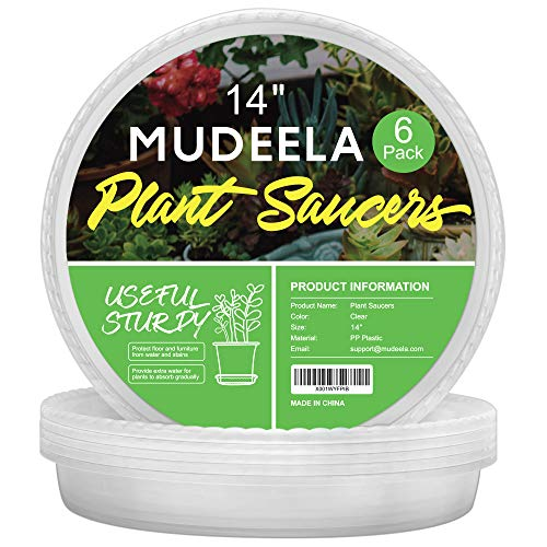 MUDEELA 6 Pack of 6, 8, 10, 12, 14, 15 inch Plant Saucer, Durable Plastic Plant Tray for Indoors, Clear Plastic Flower Plant Pot Saucer, Made of Thicker, Stronger, Recyclable Plastic (14 - 6 Pack)