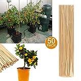50tuteurs de jardin en bambou, tuteur en bois pour la croissance des plantes,...