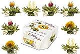 "Creano Variazione di fiori di Tè in un formato di Tazza esclusivo ""Fior die Tè Tèlini"" | 8 Fiori di Tè di 4 tipi diversi (Tè bianco)"