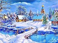 ナンバーキットでペイントスノーハウスDIY油絵キットキャンバスに絵筆とアクリル絵の具 アートクラフト家の壁の装飾用 40×50cmフレームレス