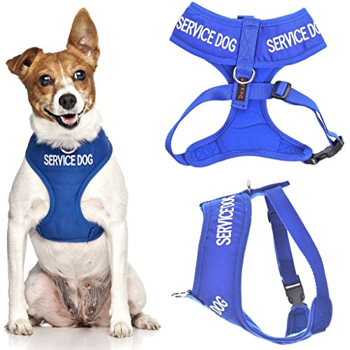 SERVICE DOG (Do Not Disturb/Dog Is Working) Blue Color Coded Non-Pull Front and Back D Ring Padded and Waterproof Vest Dog Harness PREVENTS Accidents By Warning Others Of Your Dog In Advance (XS)