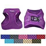 xxs puppy harness - Downtown Pet Supply No Pull, Step in Adjustable Dog Harness with Padded Vest, Easy to Put on Small, Medium and Large Dogs (Purple, XS)