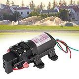 Irrigation Sprayer Water Pump,Water Pressure Pump Agriculture Accessories 12V for Garden Irrigation