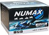 Numax - Batterie moto Numax Premium AGM YTX7A-BS 12V 6Ah 105A