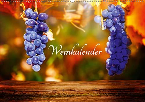 Weinkalender (Wandkalender 2021 DIN A2 quer)