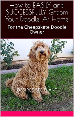 How to EASILY and SUCCESSFULLY Groom Your Doodle At Home: For the Cheapskate Doodle Owner