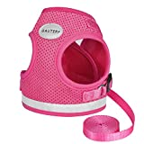 GAUTERF Kitten and Puppy Universal Harness with Leash Set, Escape Proof Cat Harnesses-Adjustable Reflective Soft Mesh Corduroy Small Dog Harnesses-Best Pet Supplies (XS (Chest: 9.5' - 11'), Rose Red)