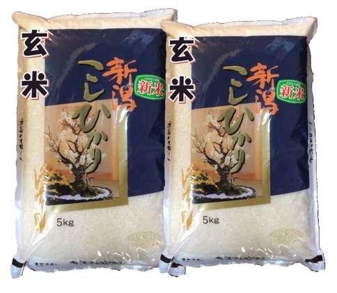 新潟県産 玄米 石抜き処理済 コシヒカリ 10kg(5kg×2袋) 令和2年産