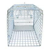Best Raccoon Traps - JungleA 24 Inches Cage Trap1-Door Foldable Live Animal Review