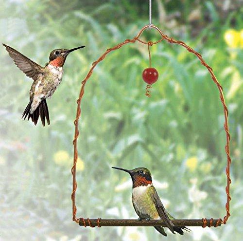 Songbird Essentials Copper Hummingbird Swing, Set of 1
