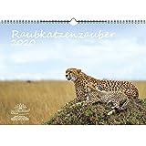 Raubkatzenzauber DIN A3 Kalender 2020 verschiedene Raubkatzen - Seelenzauber