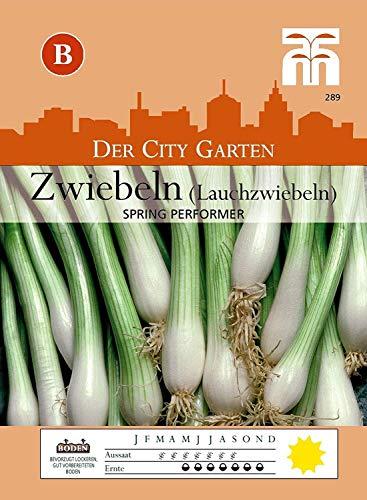 Portal Cool Lauchzwiebel 'Spring Performer' - Allium Cepa Frühlingszwiebeln Ca. 100 Samen