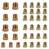 Brake Line Fitting Kit - Muhize 35 PCS Brass Brake Line Nuts Assortment for Inverted Flares on 3/16' (19 Fittings) and 1/4' (16 Fittings) Brake Line Tube