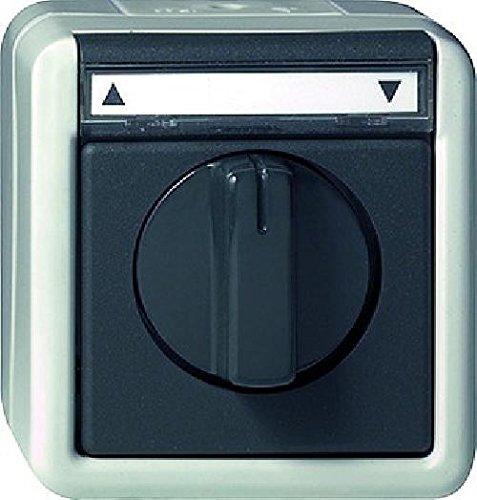 Gira 015430 Jalousietaster/-Schalter 1-polig Beschriftungsschild, Wassergeschützt Aufputz, 10 A, 250 V, grau