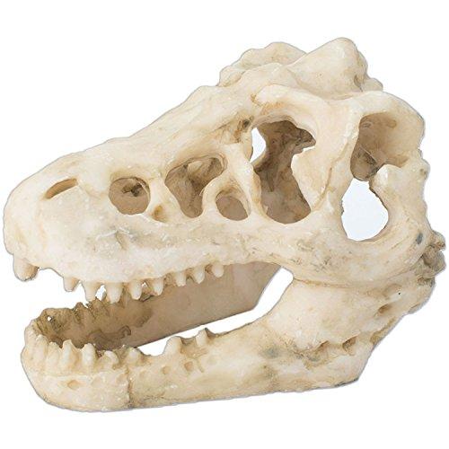 恐竜 骨 水槽 水槽オブジェ インテリア 鑑賞 金魚 熱帯魚 装飾 飾