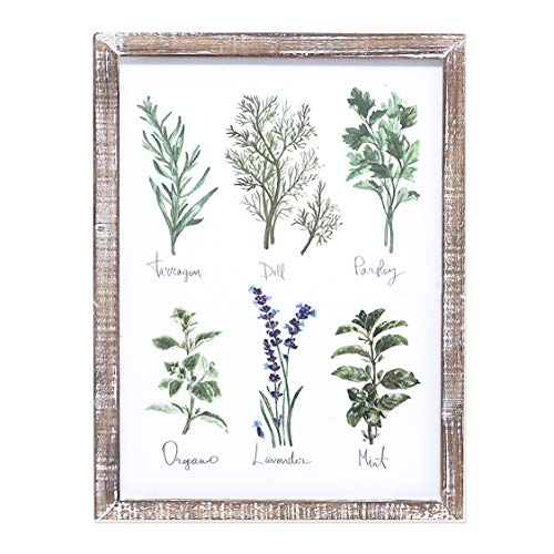 """Barnyard Designs Kitchen Herbs and Spices Wall Art Decor Botanical Print Sign Rustic Country Farmhouse Wood Plaque Framed Home Wall Decor 16"""" x 12'"""