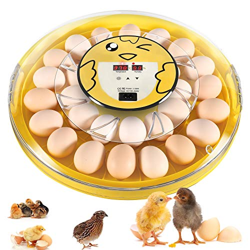 30 Egg Incubator with Automatic Egg Turn, Fan Assisted and Temperature Control, Clear Large Incubators Poultry Egg Hatching Machine Breeder for Hatching Chicken Pheasant Duck Quail Birds Eggs (yellow)