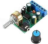 Winwill Modulo scheda amplificatore, canale stereo AUX amplificatore 2.0, 1,8 CC,12V, TDA2822M