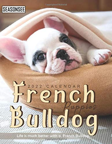 French Bulldog Puppies Calendar 2022: Gifts for Friends and Family with 18-month Monthly Calendar in 8.5x11 inch