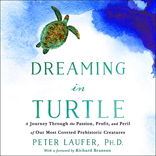 Dreaming in Turtle audiobook cover art