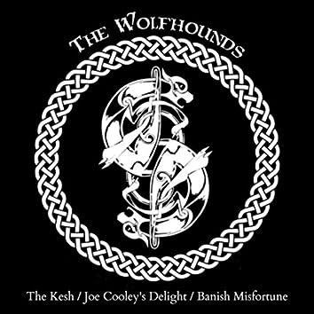 The Kesh / Joe Cooley's Delight / Banish Misfortune