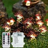 LMTXXS Lichterkette Fernbedienung, 8 Beleuchtungsmodi LED Lichterkette Batteriebetrieben 30 Pilzlampe auf Kupferdraht für Topfdekoration Weihnachtsbaum Party Gartenzaun