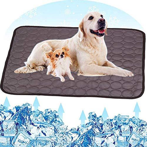 Gutsbox Kühlmatte für Hunde und Katzen XL Kühlkissen Kühl Hundedecke Kaltgelpad Selbstkühlende Matte 100x70CM
