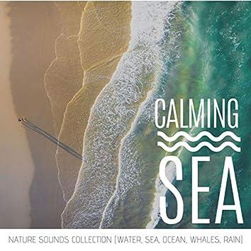 Calming Sea - Nature Sounds Collection (Water, Sea, Ocean, Whales, Rain)