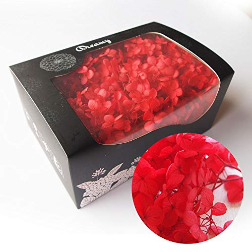 アジサイ・ヘッド 赤 約20g プリザーブドフラワー レッド(f) 花材 レジン パーツ クラフト あじさい 赤 紅 アクセサリー ハーバリウム用