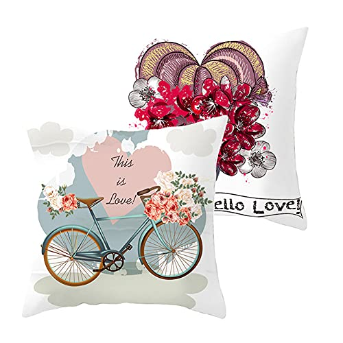 Fundas de Cojines Funda de Almohada Juego de 2 Corazón de Bicicleta Cuadrado Terciopelo Suave Cojines Decoracion con Cremallera Invisible para Sofá Decor Hogar Funda de Cojín G8482 Pillowcase_35x35cm