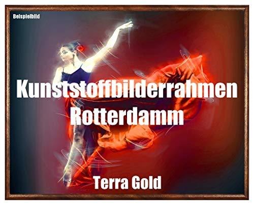 Homedecoratie fotolijst Rotterdam Terra goud kunststof met kunstglas onbreekbaar glashelder UV-bestendig 61 x 81,3 goud